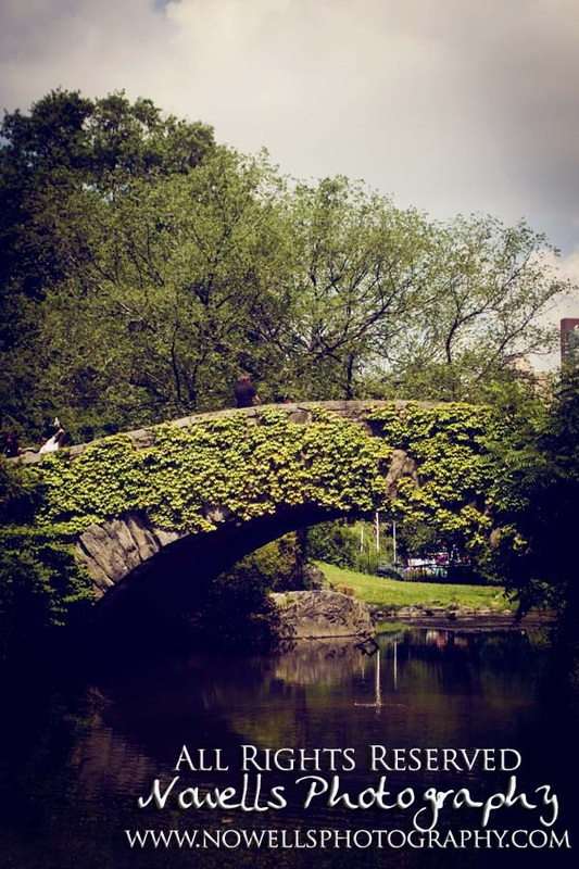 Vines Bridge Lake Pond Central Park New York, Manhattan, Real New York Tour, Photography by Noelle Wells, Nowells Photography, All Rights Reserved