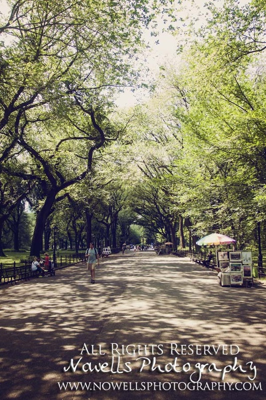 Central Park Where Harry Met Sally New York, Manhattan, Real New York Tour, Photography by Noelle Wells, Nowells Photography, All Rights Reserved