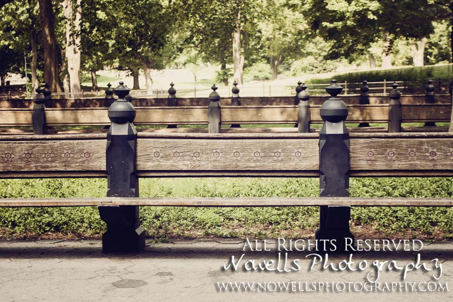 Central Park Benches New York, Manhattan, Real New York Tour, Photography by Noelle Wells, Nowells Photography, All Rights Reserved