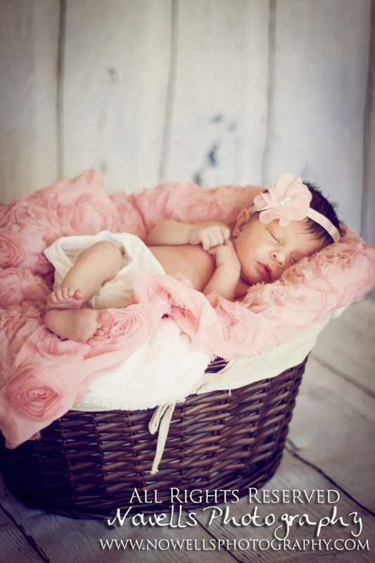 Newborn Baby Girl. Pink Roses & Flowers. Basket. Phoenix, Arizona Photographer. www.nowellsphotography.com